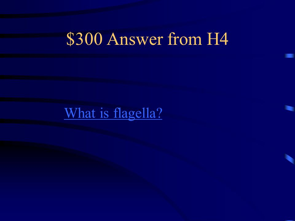 $300 Question from H4.