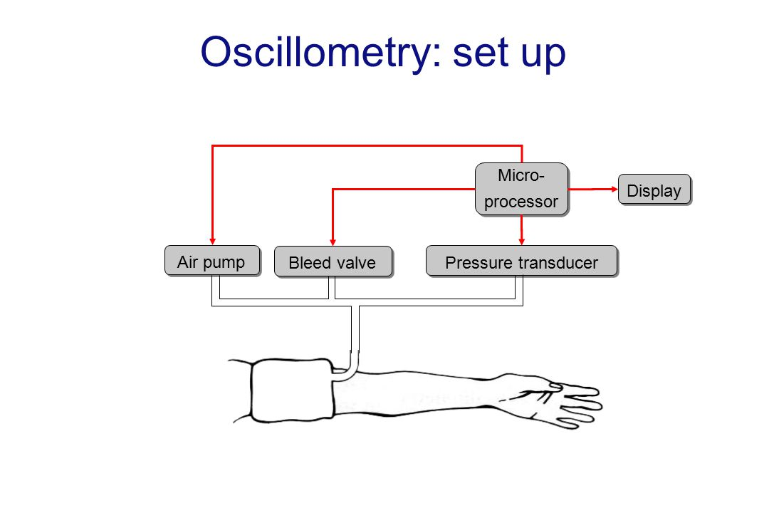 Oscillometry: set up Pressure transducer Air pump Bleed valve Micro- processor Micro- processor Display