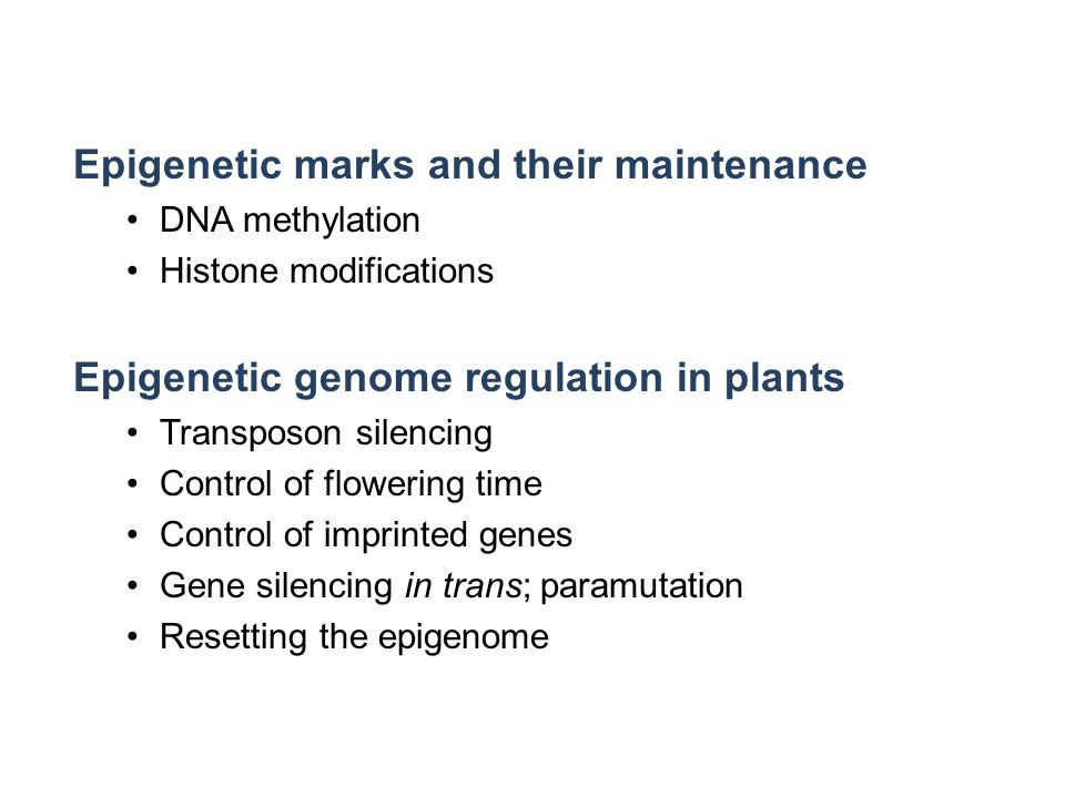 Epigenetic marks and their maintenance DNA methylation Histone modifications Epigenetic genome regulation in plants Transposon silencing Control of flowering time Control of imprinted genes Gene silencing in trans; paramutation Resetting the epigenome