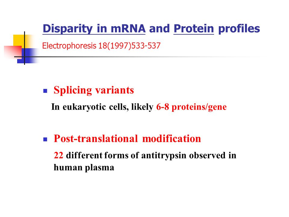 Disparity in mRNA and Protein profiles Electrophoresis 18(1997)533-537 Splicing variants In eukaryotic cells, likely 6-8 proteins/gene Post-translational modification 22 different forms of antitrypsin observed in human plasma