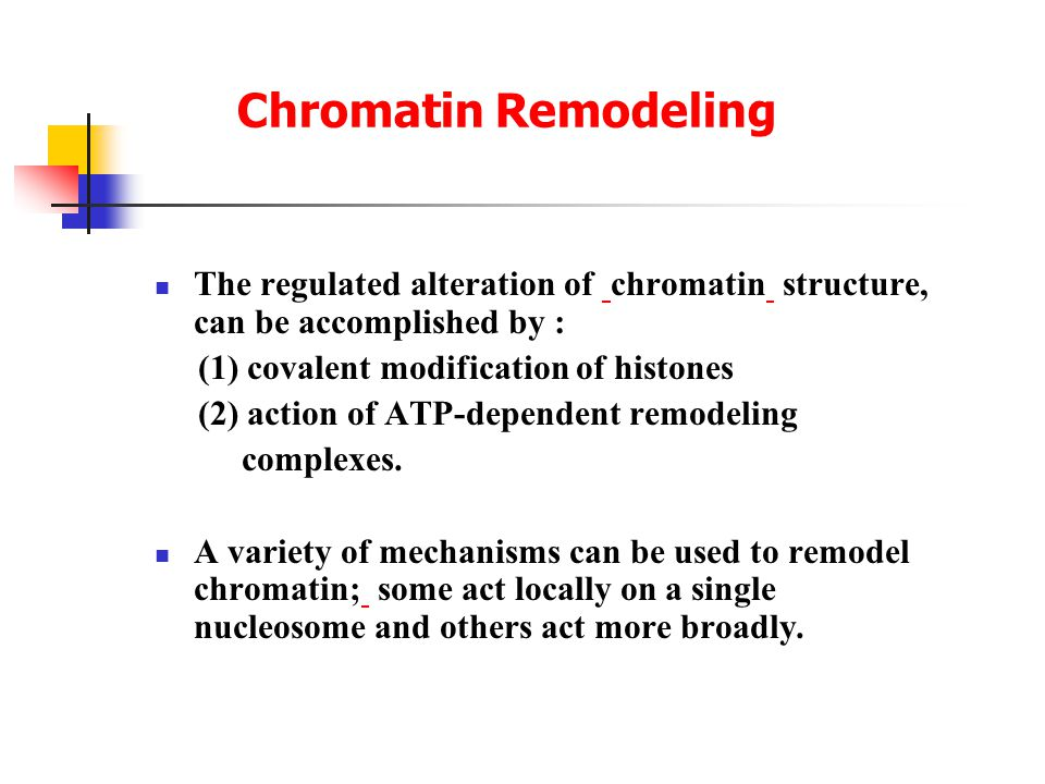 Chromatin Remodeling The regulated alteration of chromatin structure, can be accomplished by : (1) covalent modification of histones (2) action of ATP-dependent remodeling complexes.