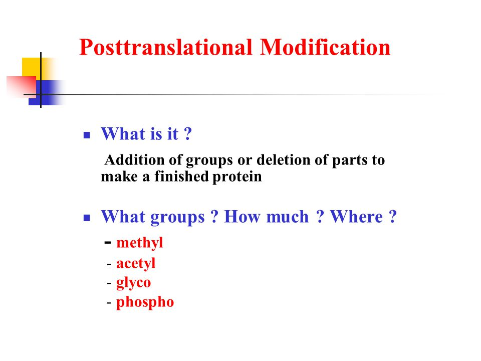 Posttranslational Modification What is it .