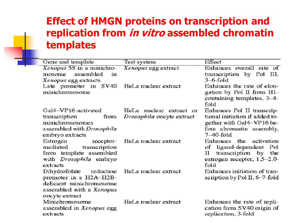 Effect of HMGN proteins on transcription and replication from in vitro assembled chromatin templates