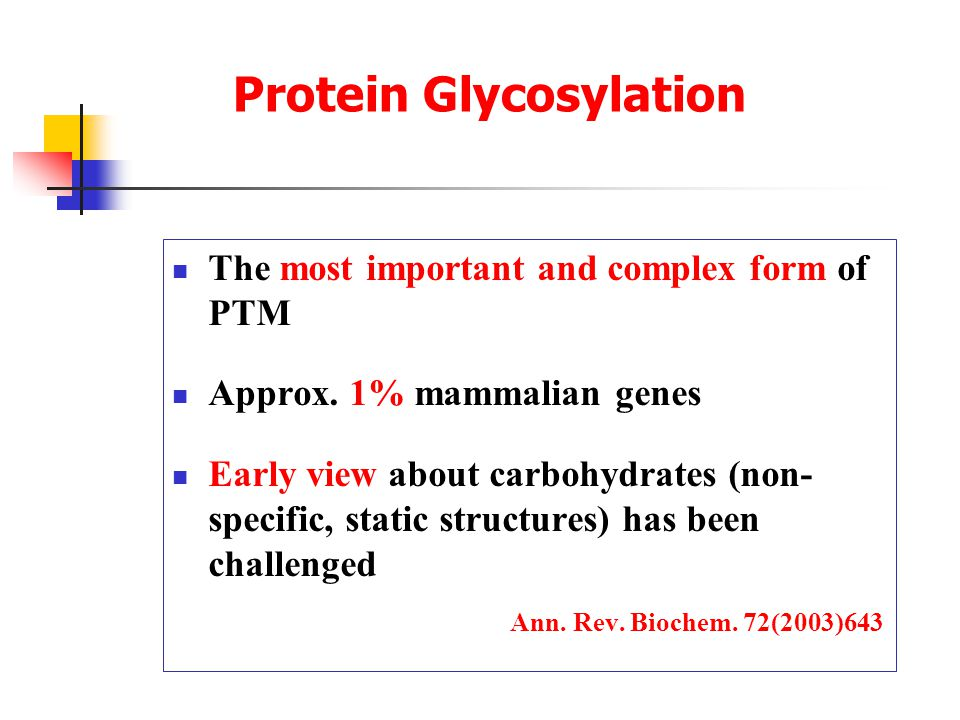 Protein Glycosylation The most important and complex form of PTM Approx.