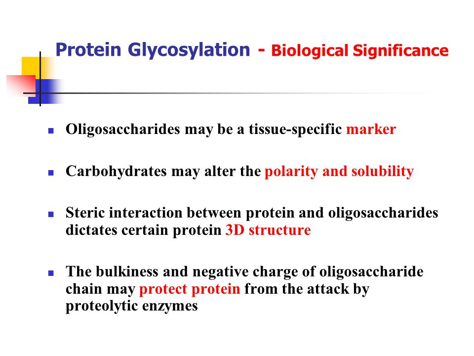 Protein Glycosylation - Biological Significance Oligosaccharides may be a tissue-specific marker Carbohydrates may alter the polarity and solubility Steric interaction between protein and oligosaccharides dictates certain protein 3D structure The bulkiness and negative charge of oligosaccharide chain may protect protein from the attack by proteolytic enzymes