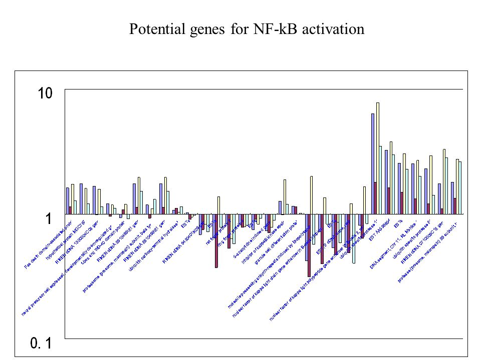 Potential genes for NF-kB activation
