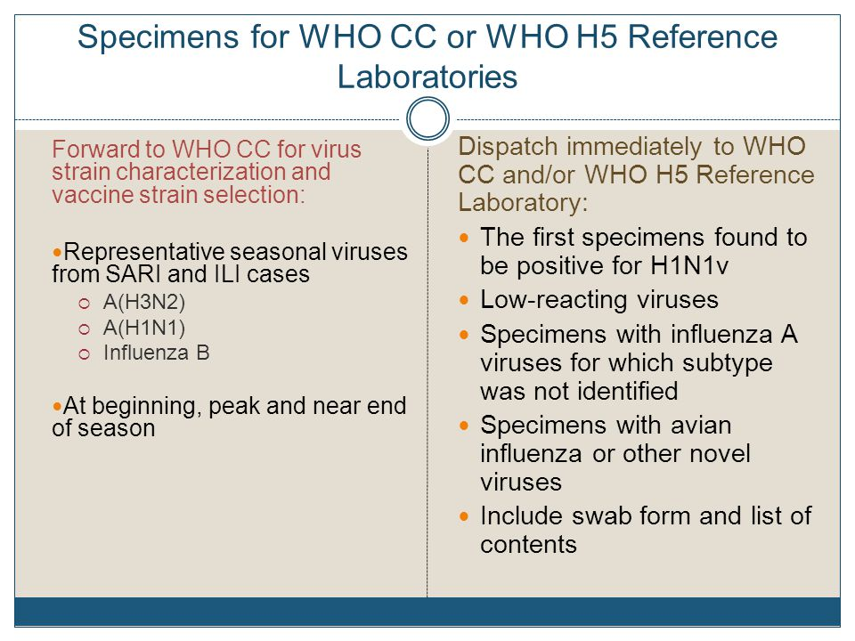 Specimens for WHO CC or WHO H5 Reference Laboratories Forward to WHO CC for virus strain characterization and vaccine strain selection: Representative seasonal viruses from SARI and ILI cases  A(H3N2)  A(H1N1)  Influenza B At beginning, peak and near end of season Dispatch immediately to WHO CC and/or WHO H5 Reference Laboratory: The first specimens found to be positive for H1N1v Low-reacting viruses Specimens with influenza A viruses for which subtype was not identified Specimens with avian influenza or other novel viruses Include swab form and list of contents