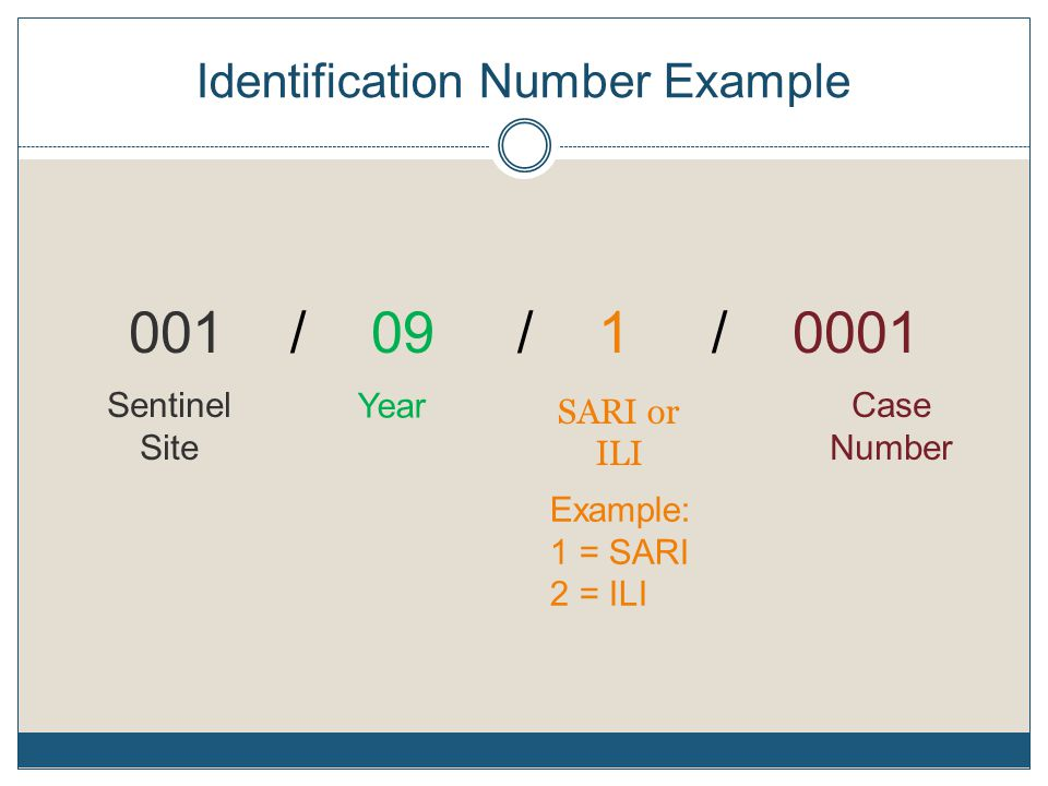 Identification Number Example 001 / 09 / 1 / 0001 Sentinel Site Year SARI or ILI Case Number Example: 1 = SARI 2 = ILI
