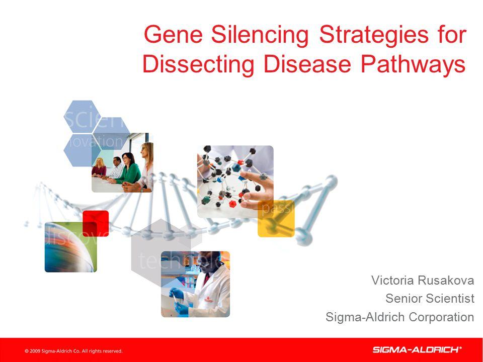 Gene Silencing Strategies for Dissecting Disease Pathways Victoria Rusakova Senior Scientist Sigma-Aldrich Corporation