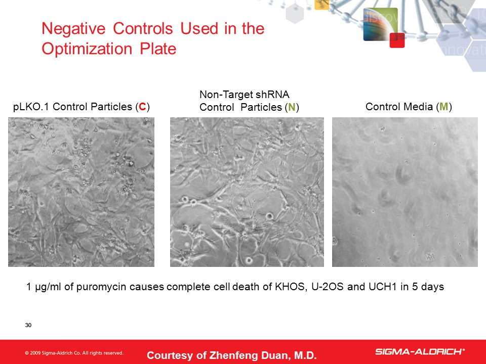 30 pLKO.1 Control Particles (C) Non-Target shRNA Control Particles (N) Control Media (M) 1 µg/ml of puromycin causes complete cell death of KHOS, U-2O