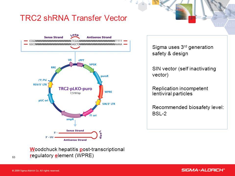 53 TRC2 shRNA Transfer Vector Woodchuck hepatitis post-transcriptional regulatory element (WPRE) Sigma uses 3 rd generation safety & design SIN vector