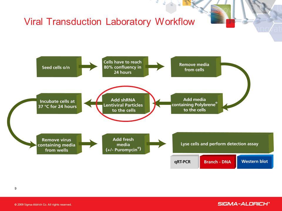 Viral Transduction Laboratory Workflow 9