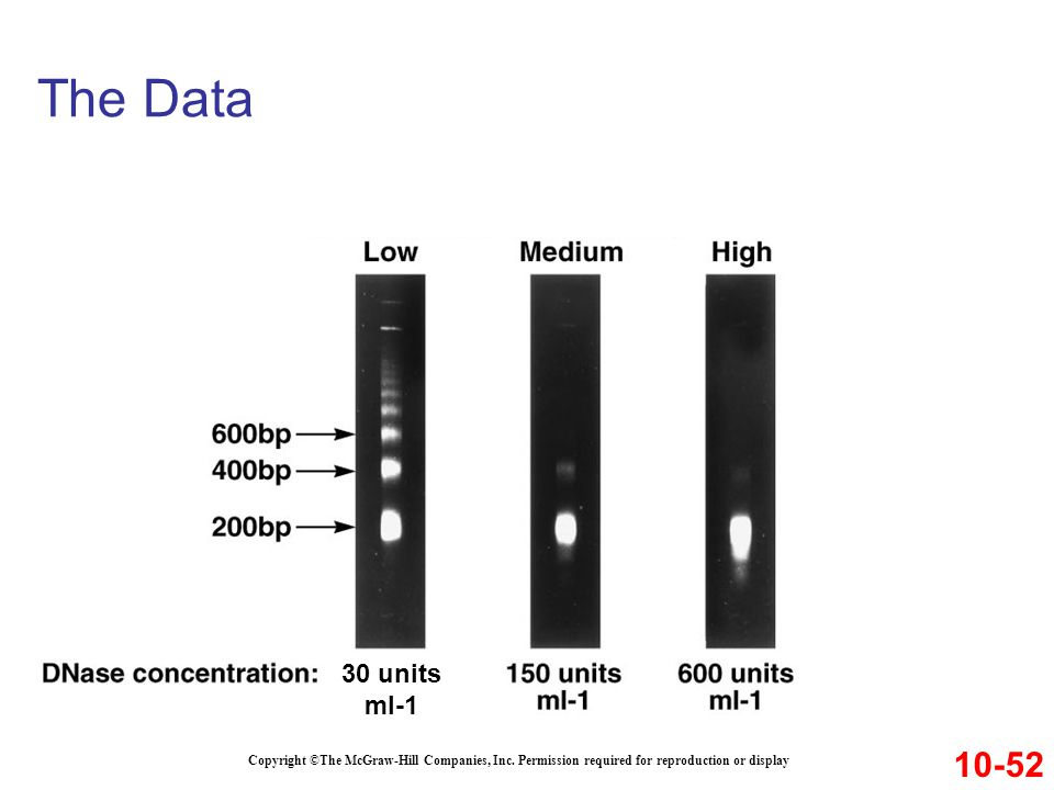 The Data Copyright ©The McGraw-Hill Companies, Inc. Permission required for reproduction or display 10-52 30 units ml-1