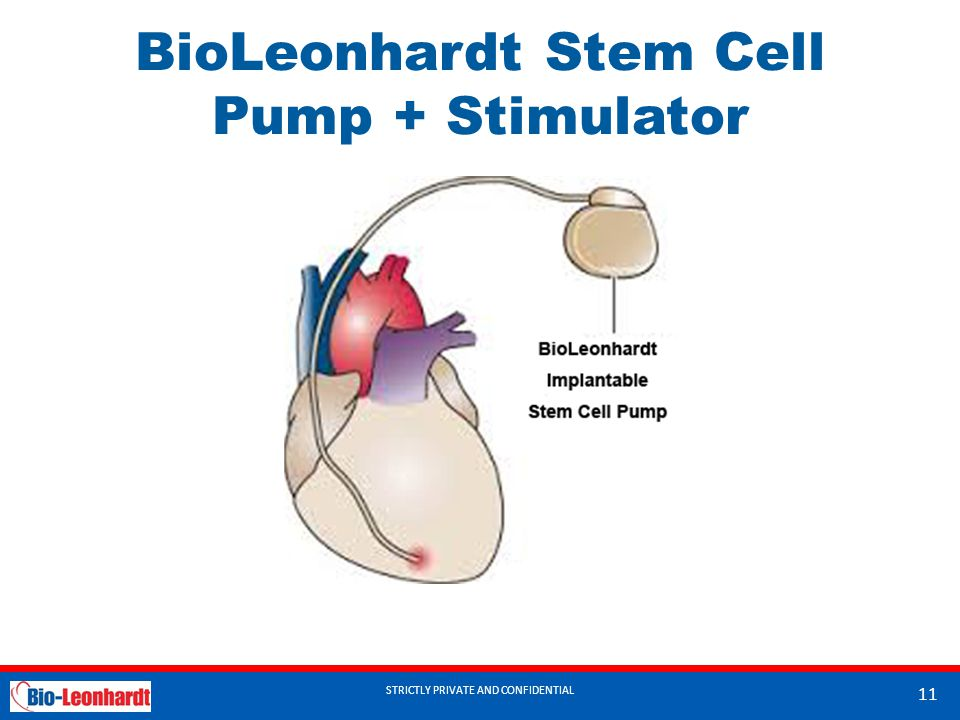 STRICTLY PRIVATE AND CONFIDENTIAL BioLeonhardt Stem Cell Pump + Stimulator STRICTLY PRIVATE AND CONFIDENTIAL 11
