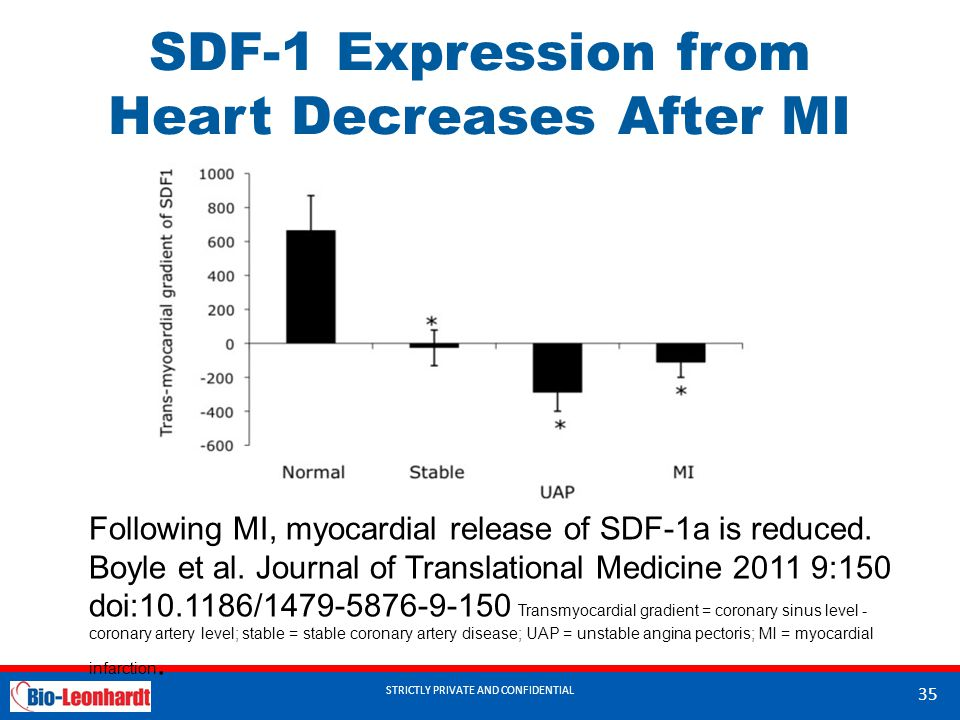 STRICTLY PRIVATE AND CONFIDENTIAL SDF-1 Expression from Heart Decreases After MI STRICTLY PRIVATE AND CONFIDENTIAL 35 Following MI, myocardial release of SDF-1a is reduced.