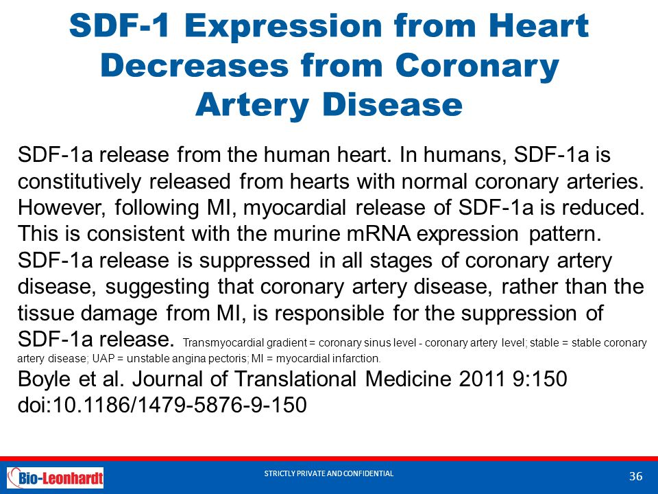 STRICTLY PRIVATE AND CONFIDENTIAL SDF-1 Expression from Heart Decreases from Coronary Artery Disease STRICTLY PRIVATE AND CONFIDENTIAL 36 SDF-1a relea