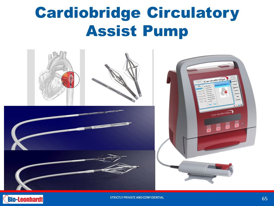 STRICTLY PRIVATE AND CONFIDENTIAL Cardiobridge Circulatory Assist Pump STRICTLY PRIVATE AND CONFIDENTIAL 65
