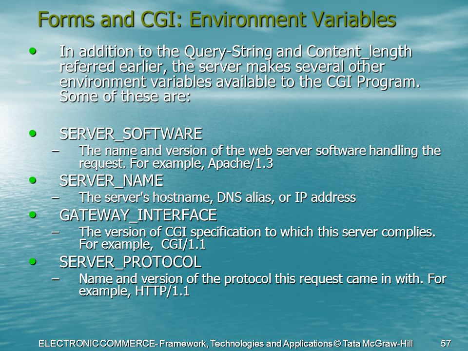 ELECTRONIC COMMERCE- Framework, Technologies and Applications © Tata McGraw-Hill 57 Forms and CGI: Environment Variables In addition to the Query-Stri