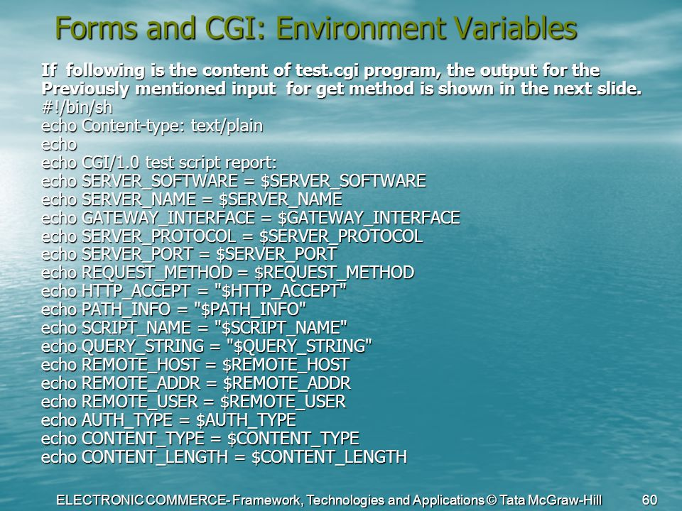 ELECTRONIC COMMERCE- Framework, Technologies and Applications © Tata McGraw-Hill 60 Forms and CGI: Environment Variables If following is the content o