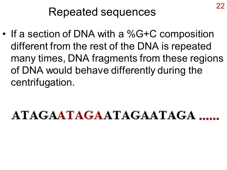 22 Repeated sequences If a section of DNA with a %G+C composition different from the rest of the DNA is repeated many times, DNA fragments from these regions of DNA would behave differently during the centrifugation.