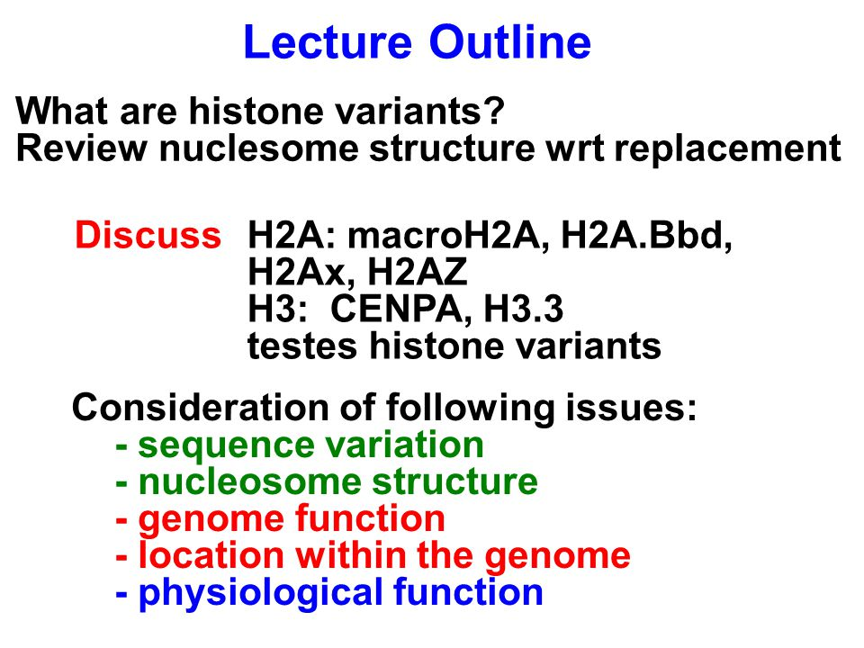 Lecture Outline What are histone variants.