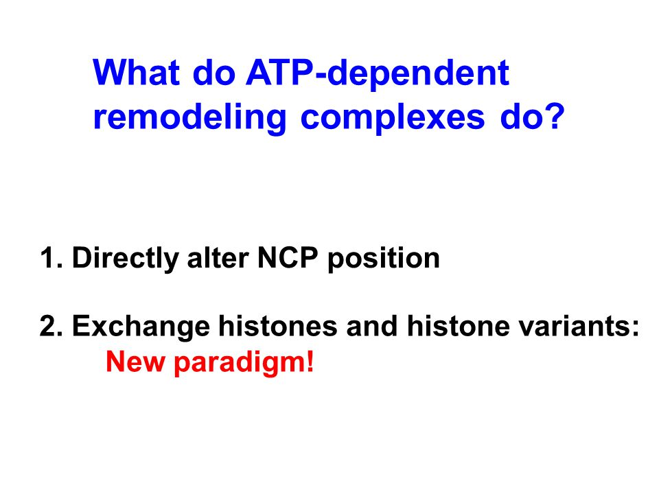 What do ATP-dependent remodeling complexes do.2.
