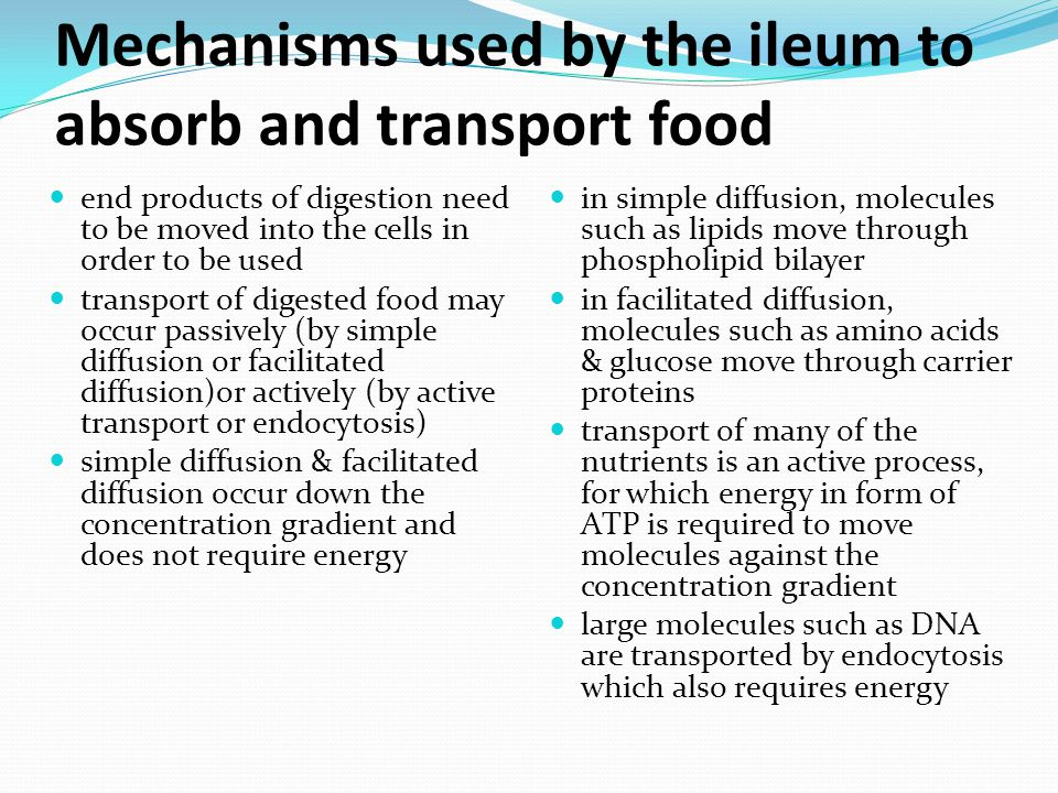 Mechanisms used by the ileum to absorb and transport food end products of digestion need to be moved into the cells in order to be used transport of digested food may occur passively (by simple diffusion or facilitated diffusion)or actively (by active transport or endocytosis) simple diffusion & facilitated diffusion occur down the concentration gradient and does not require energy in simple diffusion, molecules such as lipids move through phospholipid bilayer in facilitated diffusion, molecules such as amino acids & glucose move through carrier proteins transport of many of the nutrients is an active process, for which energy in form of ATP is required to move molecules against the concentration gradient large molecules such as DNA are transported by endocytosis which also requires energy