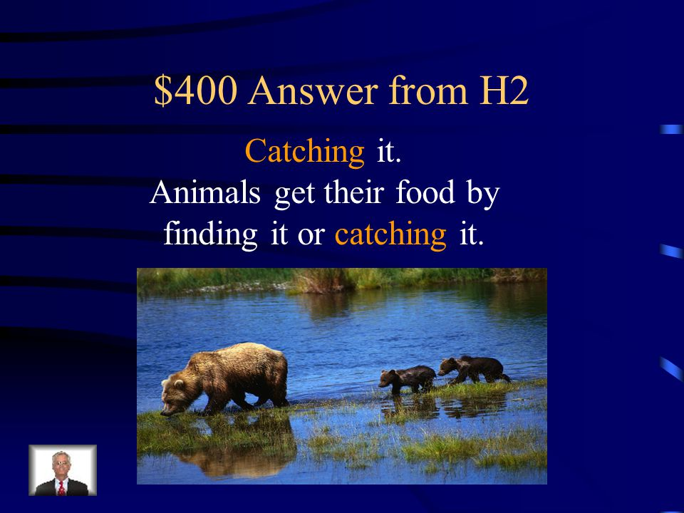 $400 Question from H2 Animals get their food by finding it or __________it.