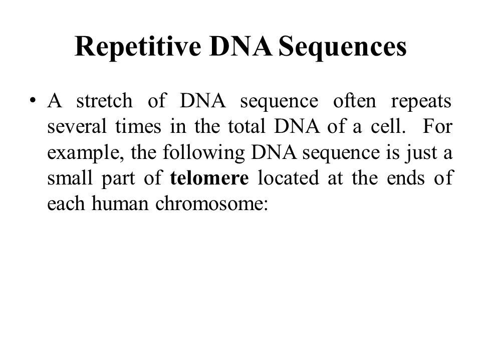 Repetitive DNA Sequences A stretch of DNA sequence often repeats several times in the total DNA of a cell.