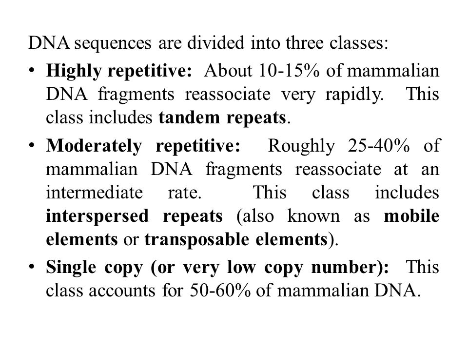 DNA sequences are divided into three classes: Highly repetitive: About 10-15% of mammalian DNA fragments reassociate very rapidly.