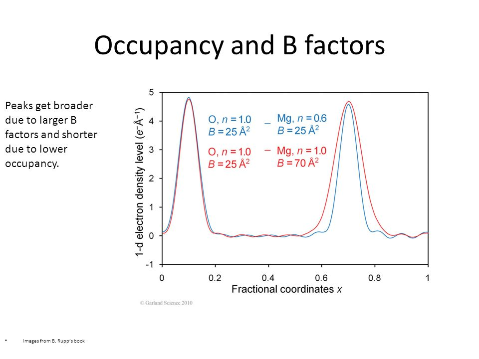 Occupancy and B factors Images from B.