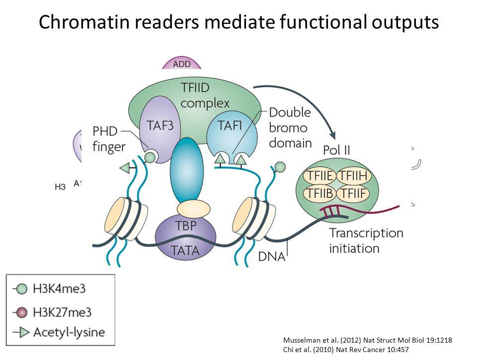 Musselman et al. (2012) Nat Struct Mol Biol 19:1218 Chi et al.