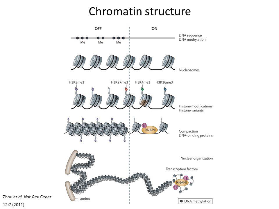 Genome browser interlude