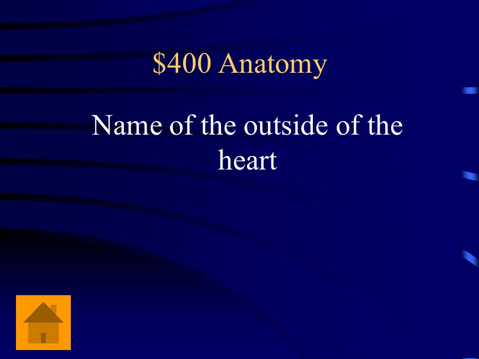 $400 Anatomy Name of the outside of the heart