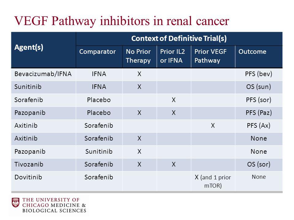 VEGF Pathway inhibitors in renal cancer Agent(s) Context of Definitive Trial(s) ComparatorNo Prior Therapy Prior IL2 or IFNA Prior VEGF Pathway Outcome Bevacizumab/IFNAIFNAXPFS (bev) SunitinibIFNAXOS (sun) SorafenibPlaceboXPFS (sor) PazopanibPlaceboXXPFS (Paz) AxitinibSorafenibXPFS (Ax) AxitinibSorafenibXNone PazopanibSunitinibXNone TivozanibSorafenibXXOS (sor) DovitinibSorafenibX (and 1 prior mTOR) None