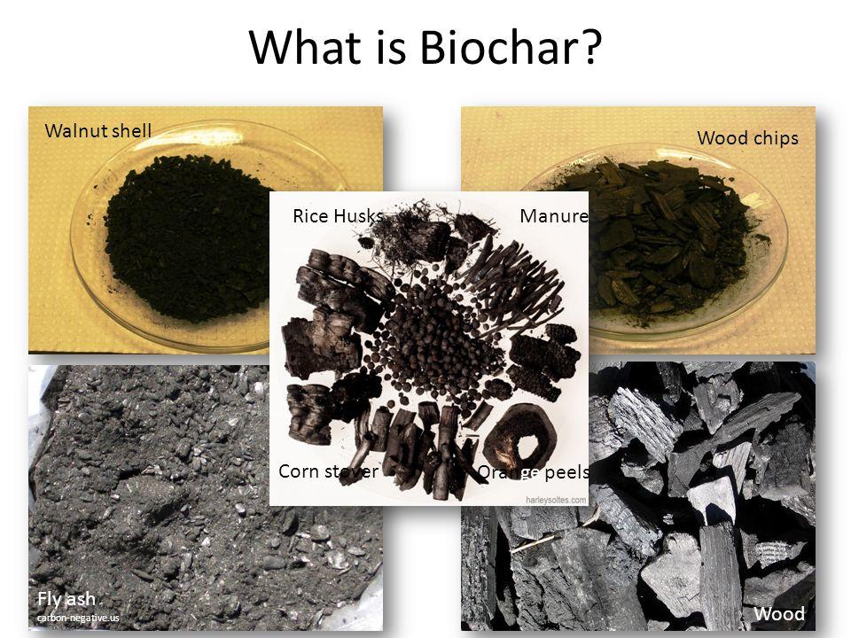 What is Biochar? Walnut shell Wood Wood chips Fly ash carbon-negative.us Corn stover Rice HusksManure Orange peels
