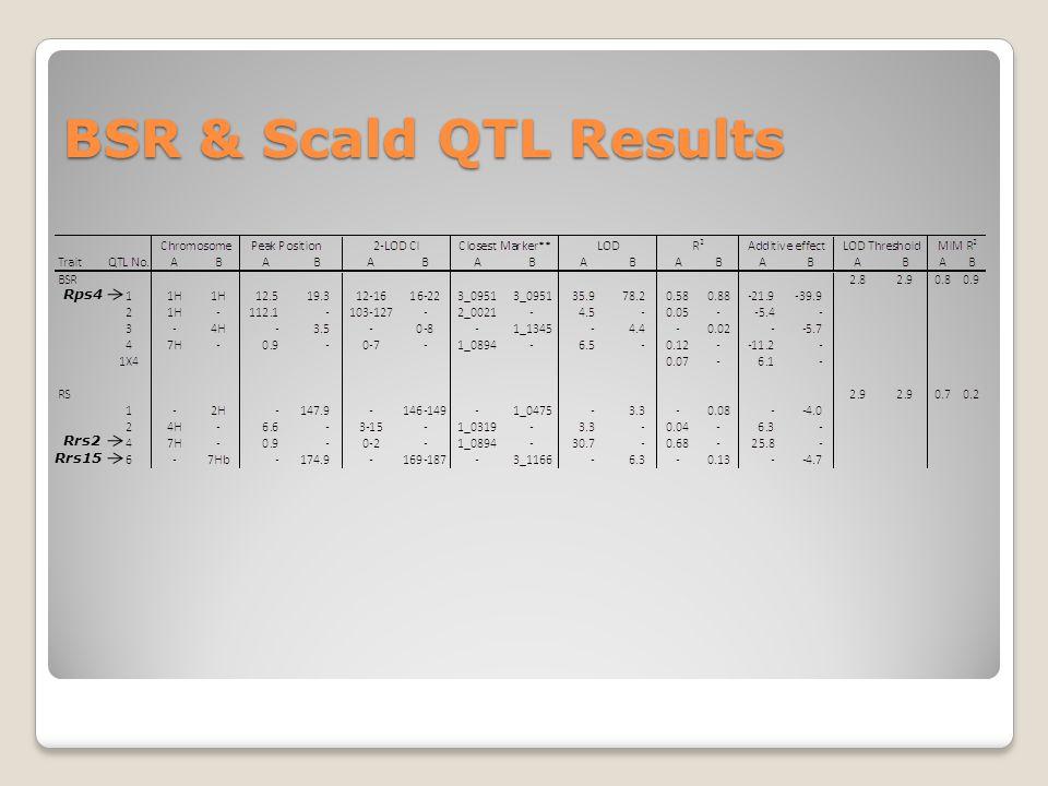 BSR & Scald QTL Results Rps4 Rrs15 Rrs2