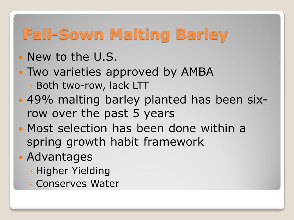 Fall-Sown Malting Barley New to the U.S.
