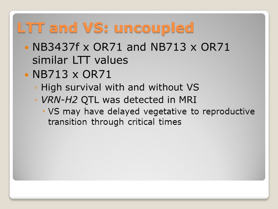 LTT and VS: uncoupled NB3437f x OR71 and NB713 x OR71 similar LTT values NB713 x OR71 ◦High survival with and without VS ◦VRN-H2 QTL was detected in MRI  VS may have delayed vegetative to reproductive transition through critical times