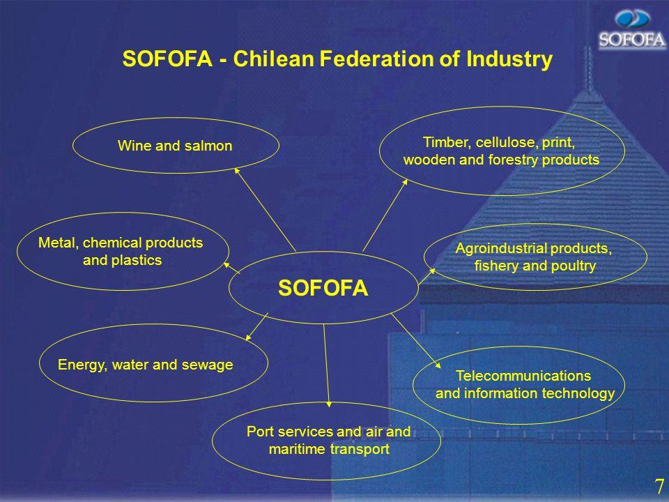 6 SOFOFA - Chilean Federation of Industry SOFOFA 2500 corporate affiliates 38 sector affiliates 8 regional affiliates Arica – Antofagasta – Valparaíso