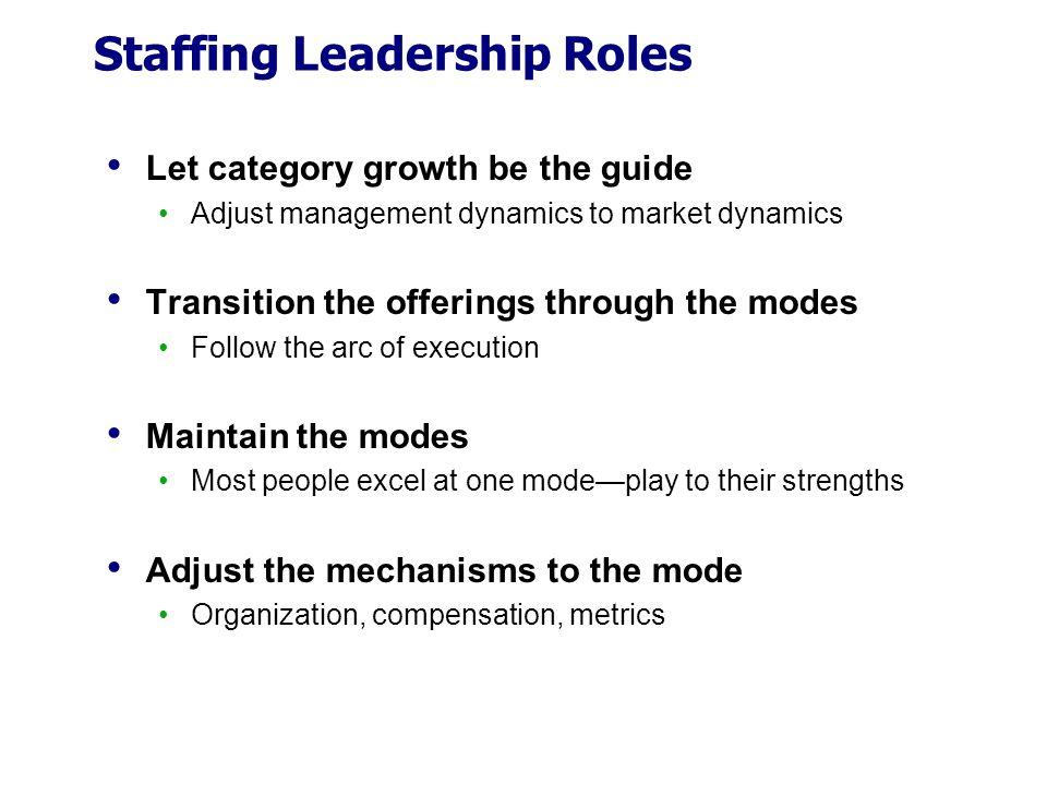 Staffing Leadership Roles Let category growth be the guide Adjust management dynamics to market dynamics Transition the offerings through the modes Fo