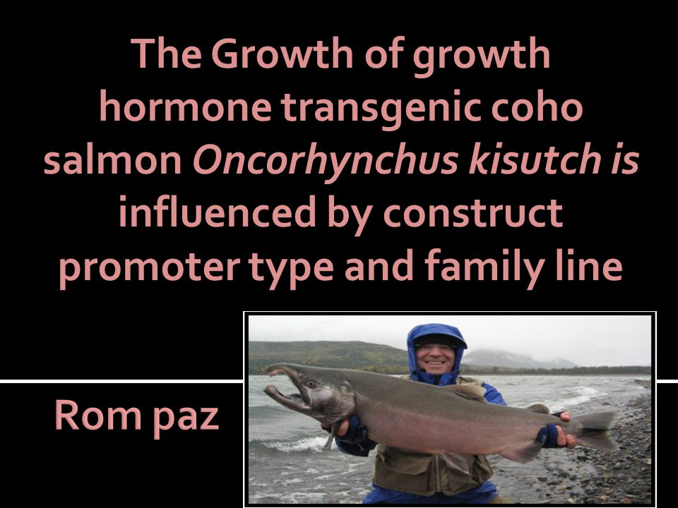  Background  Coho salmon  Growth hormone (GH)  GH Transgenic  Research Significance  Methods  Results  conclusion and further research