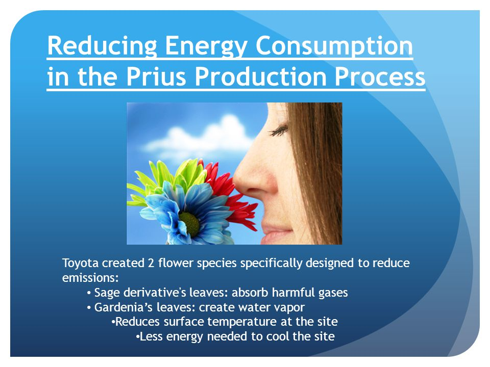 Reducing Energy Consumption in the Prius Production Process Toyota created 2 flower species specifically designed to reduce emissions: Sage derivative s leaves: absorb harmful gases Gardenia's leaves: create water vapor Reduces surface temperature at the site Less energy needed to cool the site