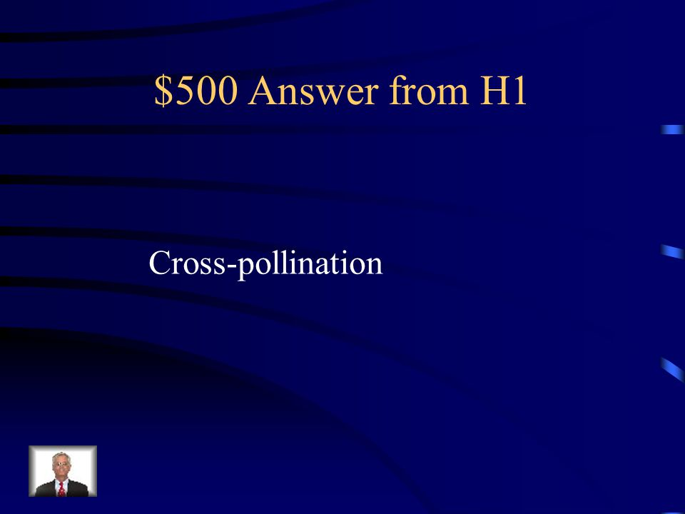 $500 Question from H1 What process did Mendel use when he took the pollen from flowers of purebred tall plants to pollinate the flowers of purebred short plant by hand.