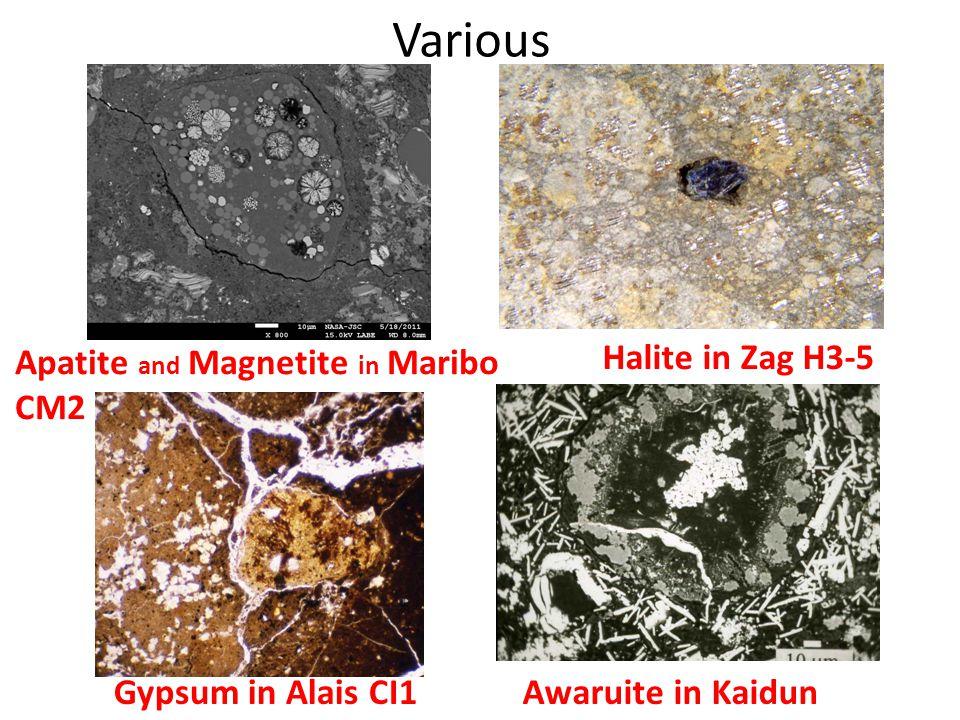 Various Apatite and Magnetite in Maribo CM2 Gypsum in Alais CI1Awaruite in Kaidun Halite in Zag H3-5