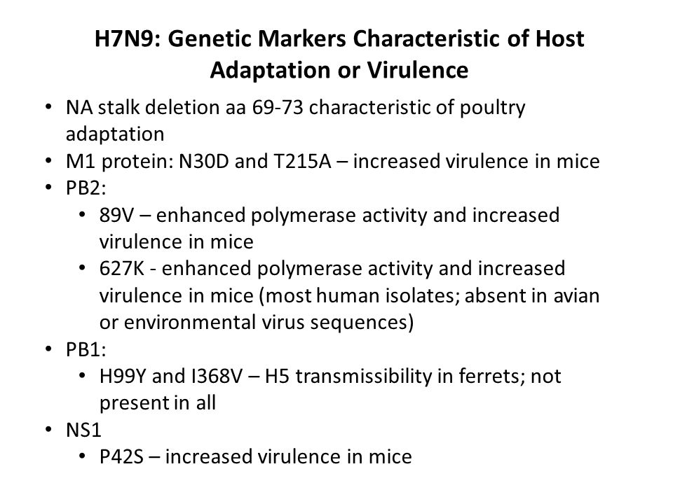 H7N9: Genetic Markers Characteristic of Host Adaptation or Virulence NA stalk deletion aa 69-73 characteristic of poultry adaptation M1 protein: N30D and T215A – increased virulence in mice PB2: 89V – enhanced polymerase activity and increased virulence in mice 627K - enhanced polymerase activity and increased virulence in mice (most human isolates; absent in avian or environmental virus sequences) PB1: H99Y and I368V – H5 transmissibility in ferrets; not present in all NS1 P42S – increased virulence in mice