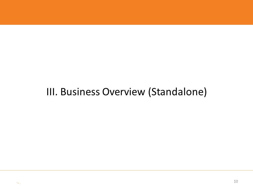 10 III. Business Overview (Standalone)