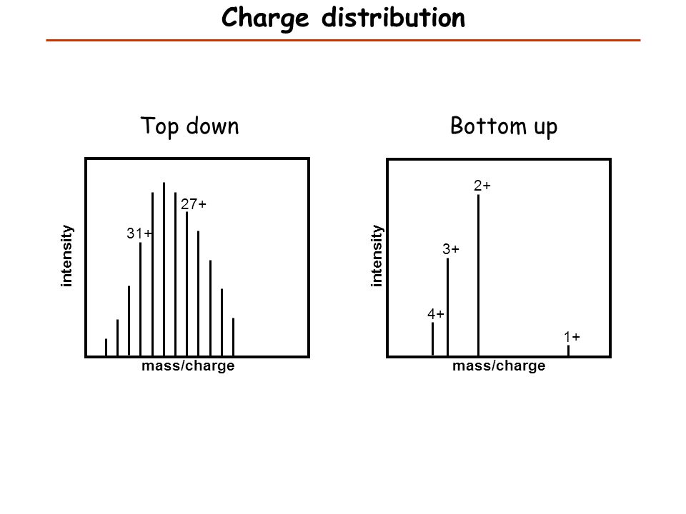 Top down Bottom up Charge distribution mass/charge intensity mass/charge intensity 1+ 2+ 3+ 4+ 27+ 31+