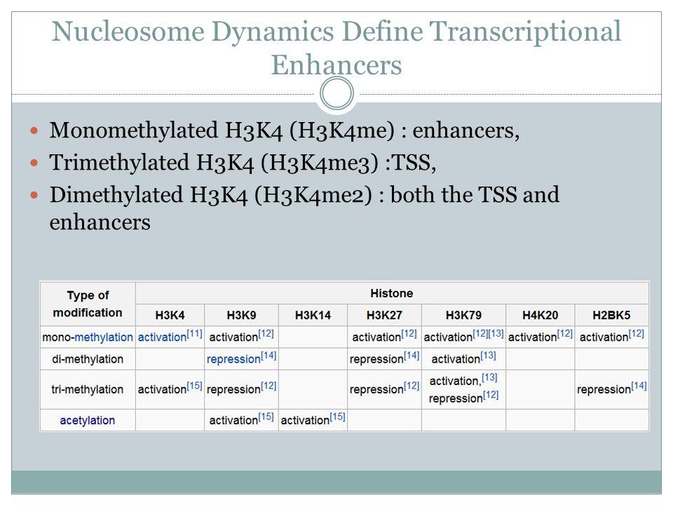 Nucleosome Dynamics Define Transcriptional Enhancers Monomethylated H3K4 (H3K4me) : enhancers, Trimethylated H3K4 (H3K4me3) :TSS, Dimethylated H3K4 (H3K4me2) : both the TSS and enhancers
