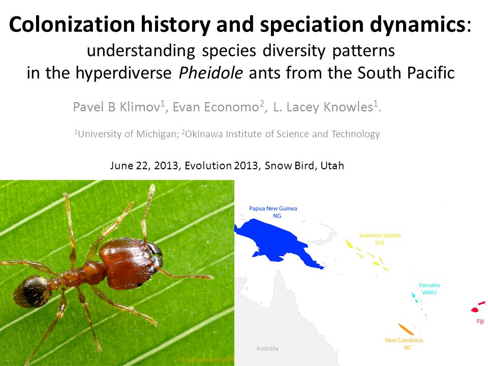 Colonization history and speciation dynamics: understanding species diversity patterns in the hyperdiverse Pheidole ants from the South Pacific Pavel B Klimov 1, Evan Economo 2, L.